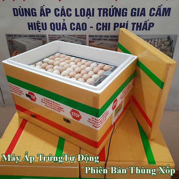 may-ap-trung-thung-xop3
